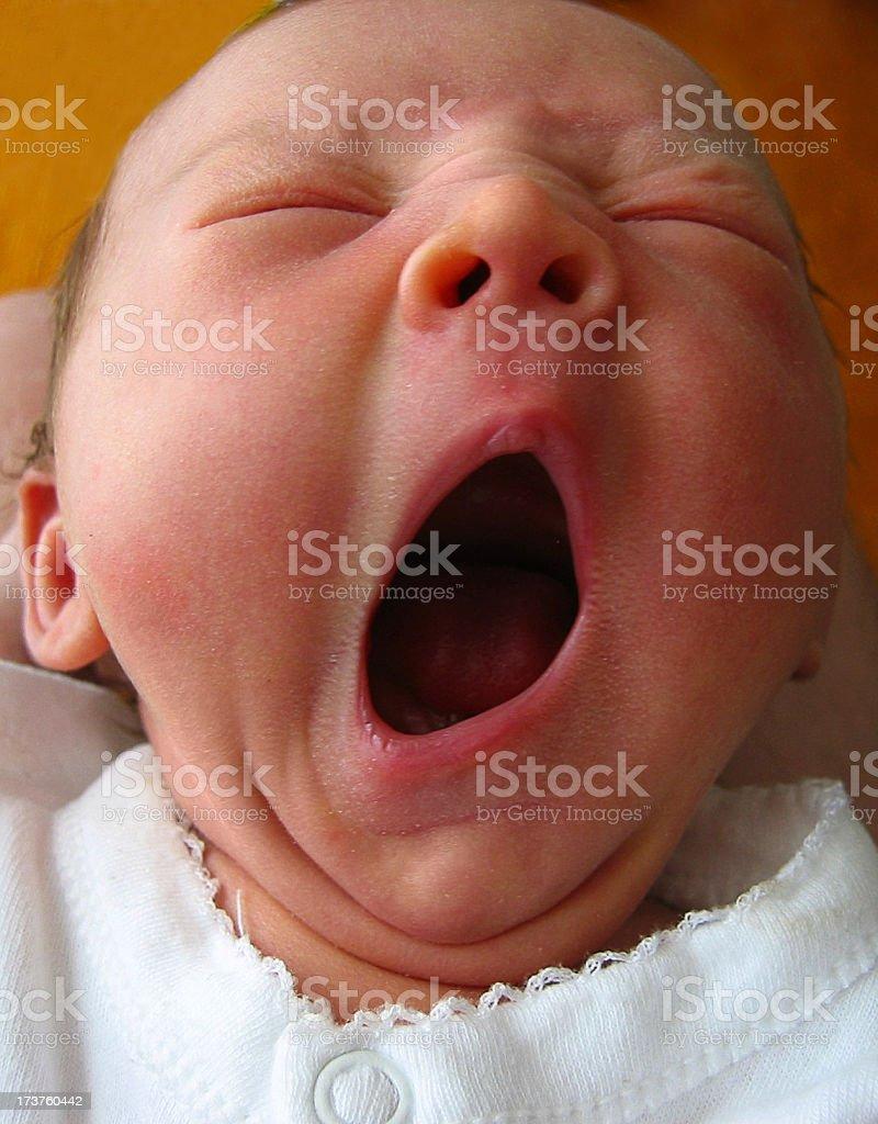 Big Yawn stock photo