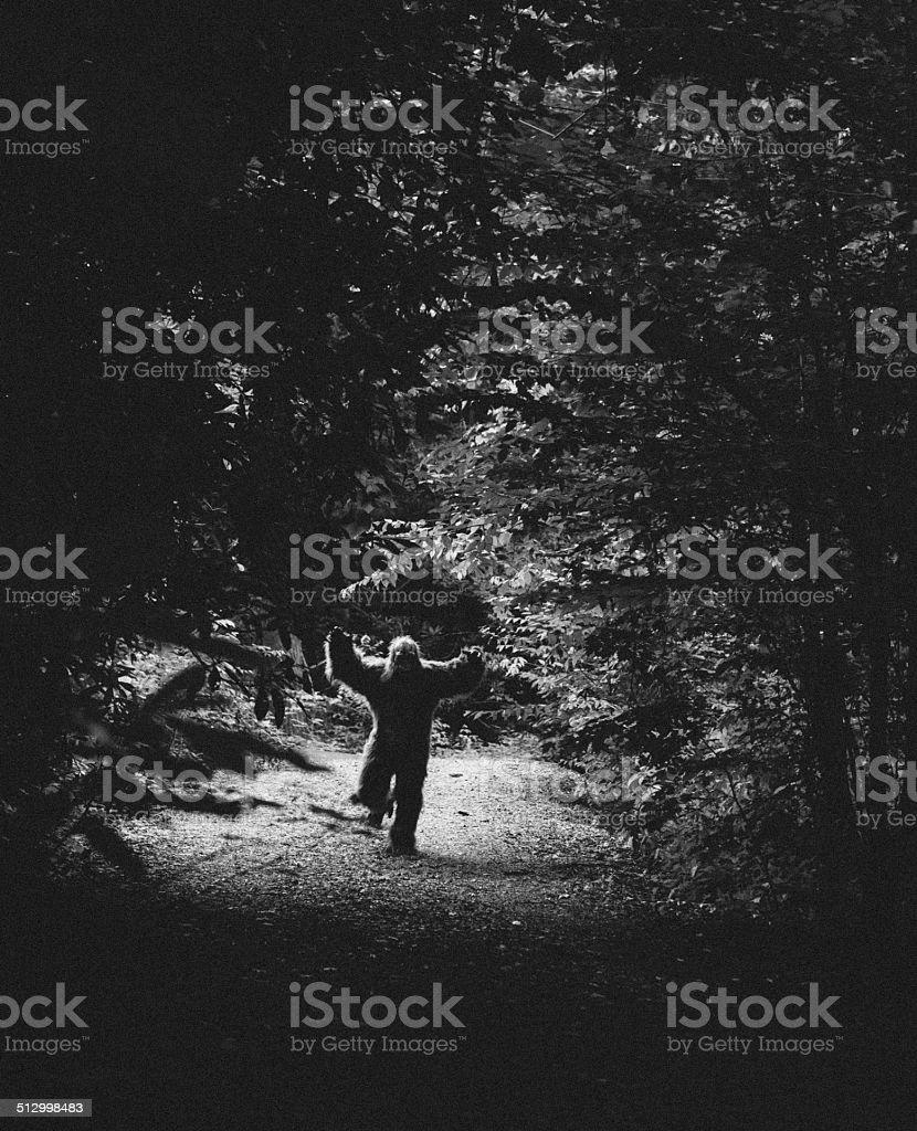 bigfoot attacking stock photo
