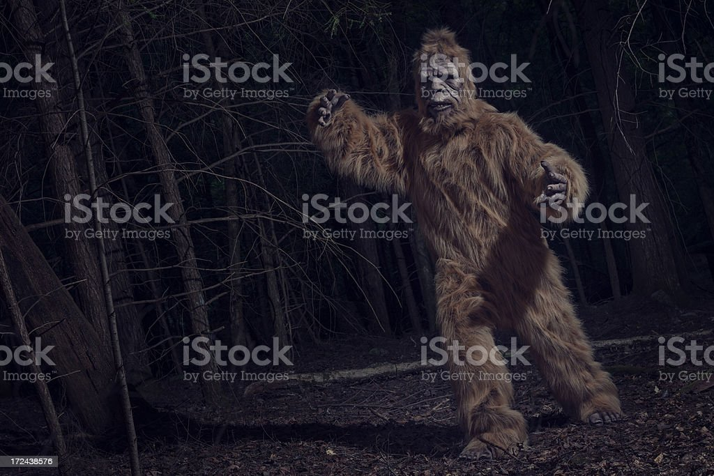 bigfoot chase stock photo