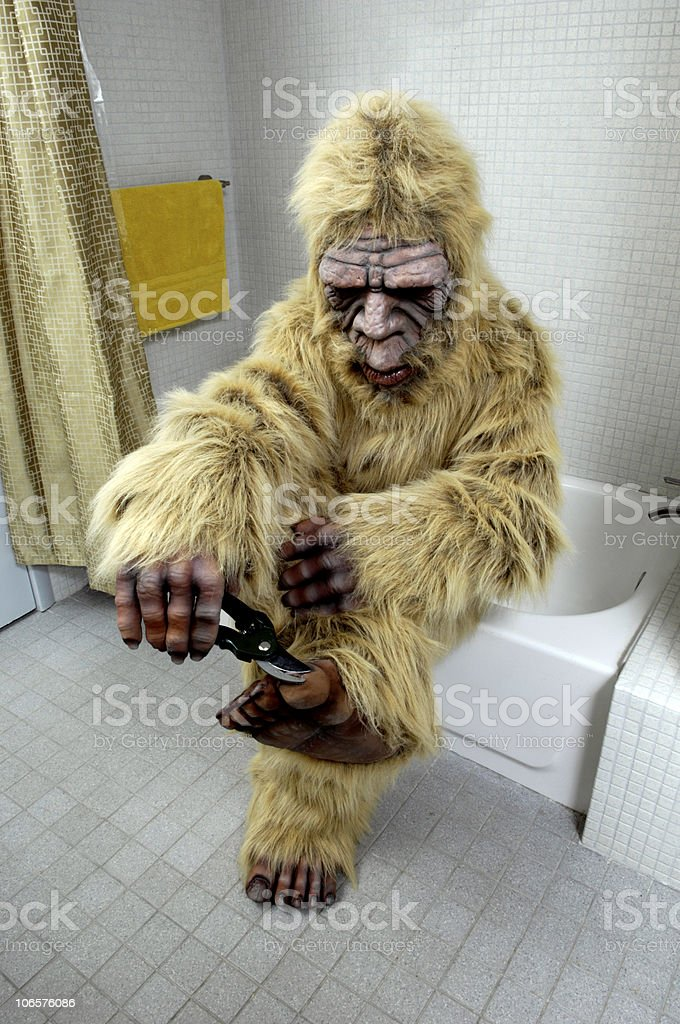 Bigfoot Clipping Her Toenails stock photo