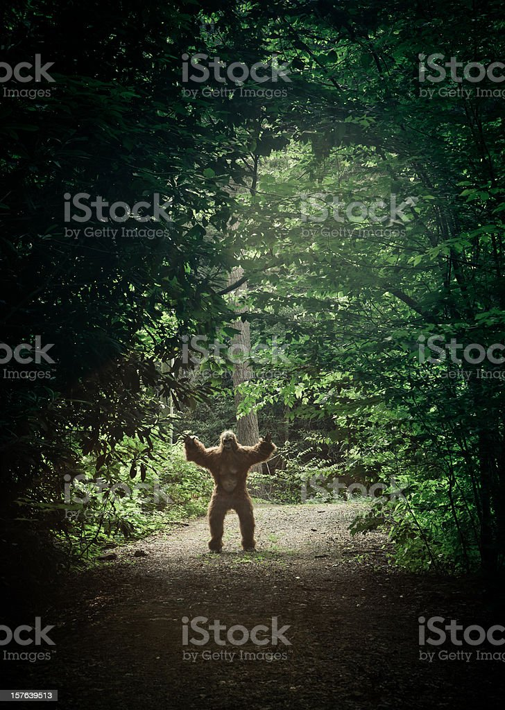 bigfoot making an appearance in a dirty road stock photo