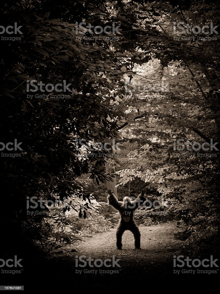 bigfoot making an appearance on a dirty road stock photo