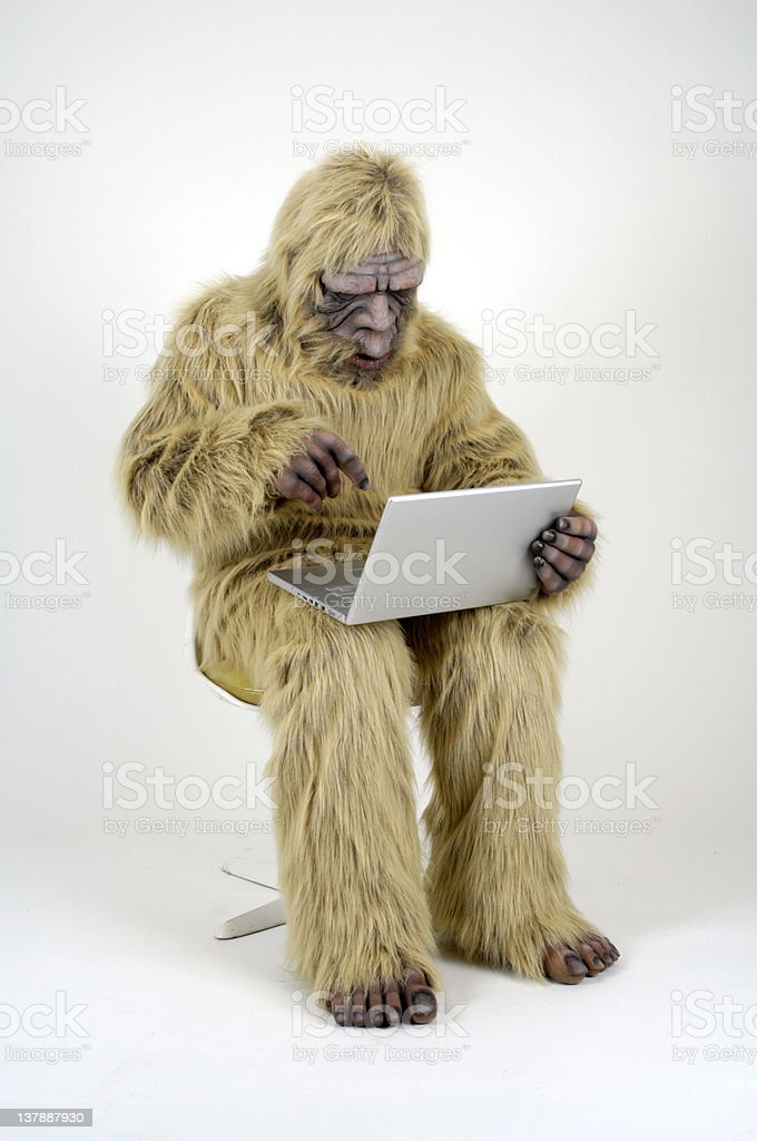 Bigfoot on Laptop stock photo