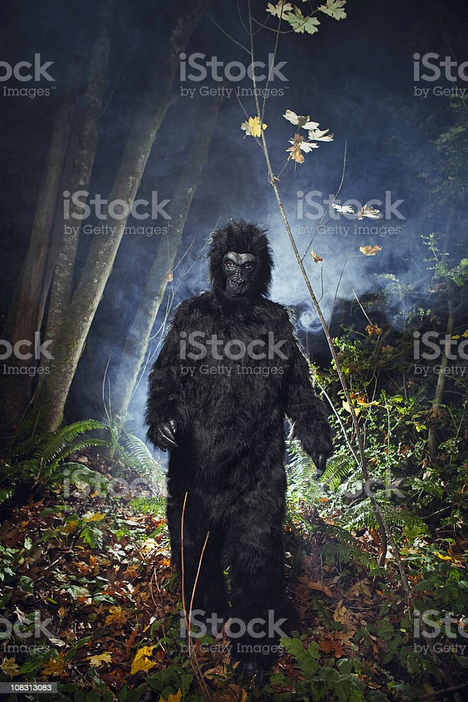Bigfoot or Wild Gorilla In Dark Woods stock photo