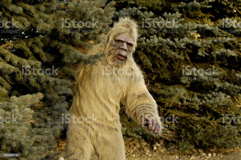 Bigfoot Outdoors royalty-free stock photo