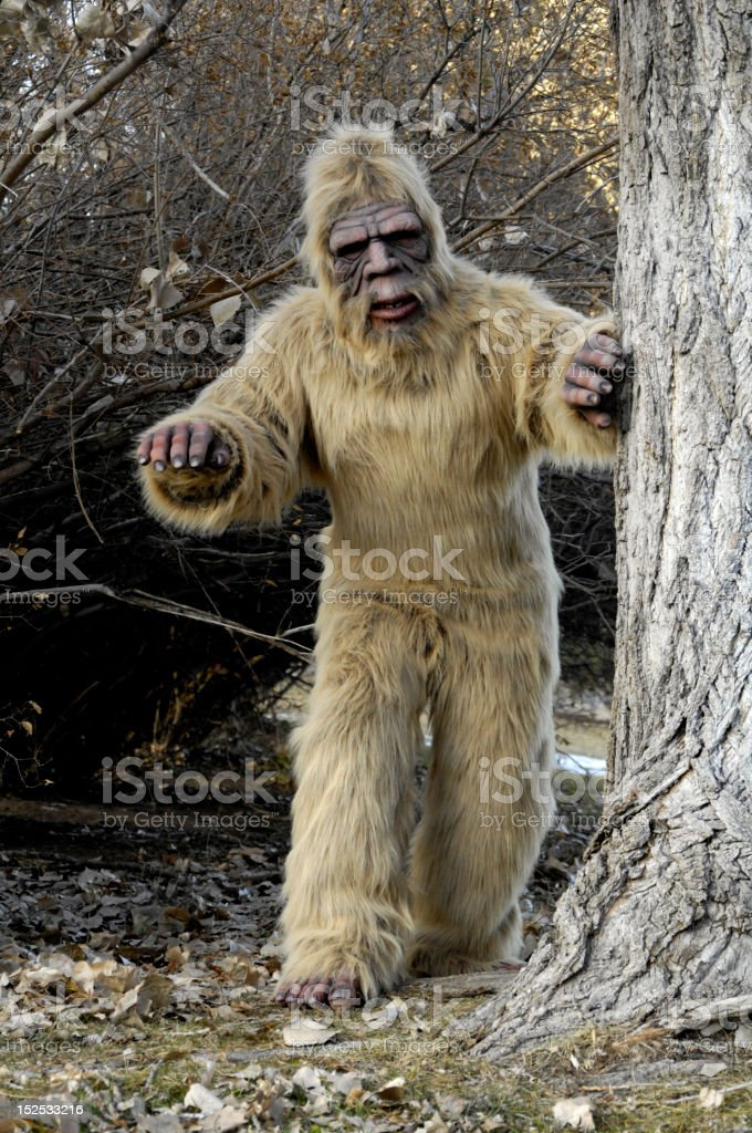 Bigfoot royalty-free stock photo