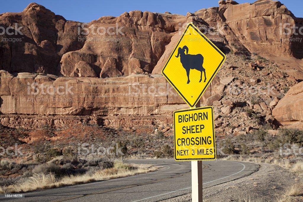 Bighorn Sheep Crossing Sign stock photo