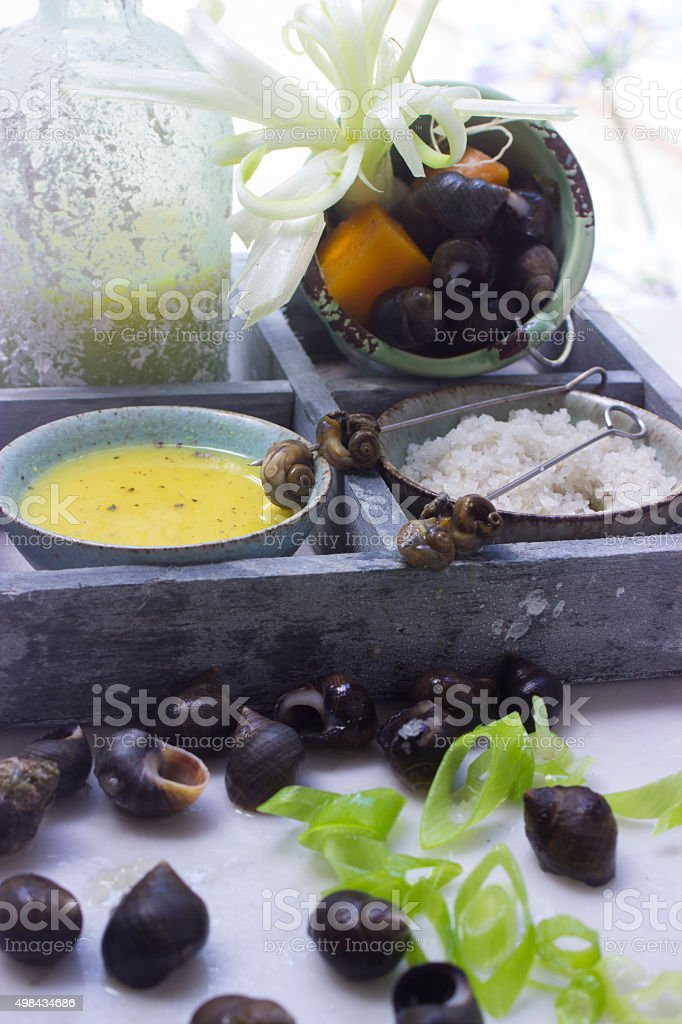 Bigorneau - Sea Snails stock photo