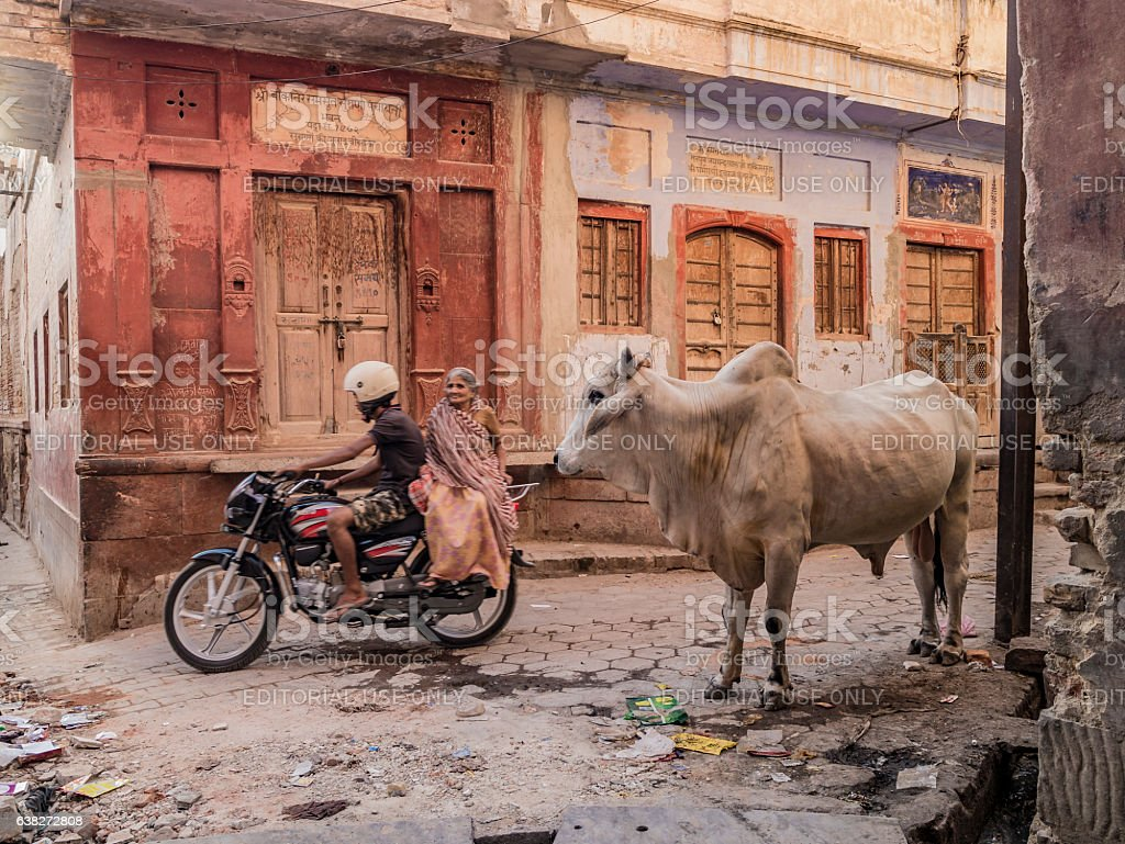 Bikaner India stock photo