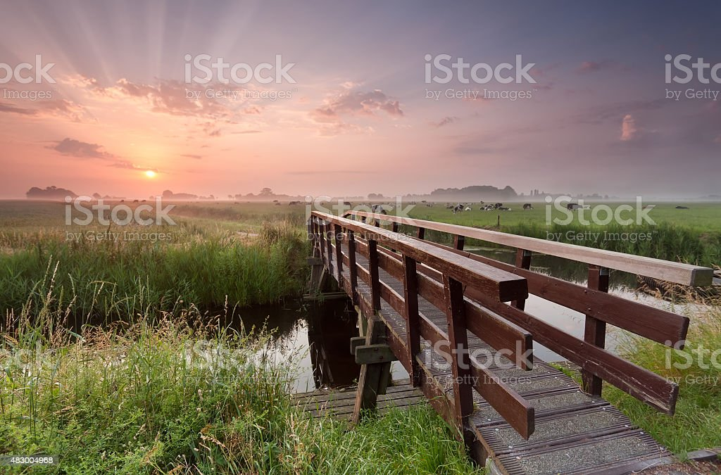bike bridge over river at sunrise stock photo