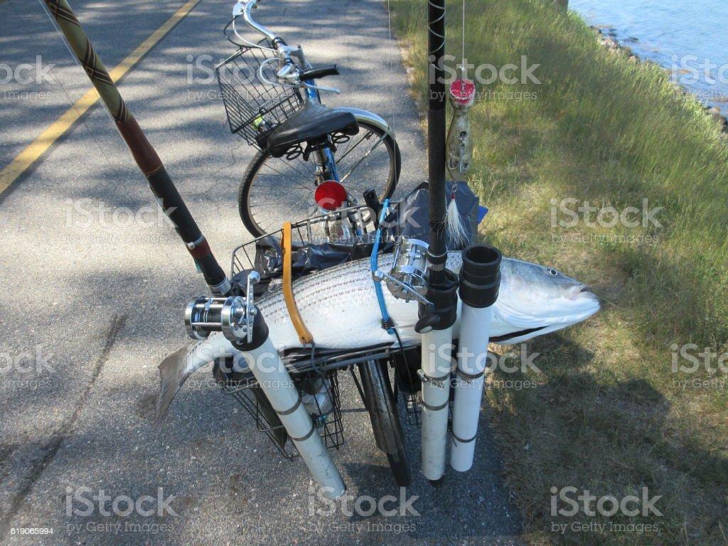 Bike & Fish stock photo