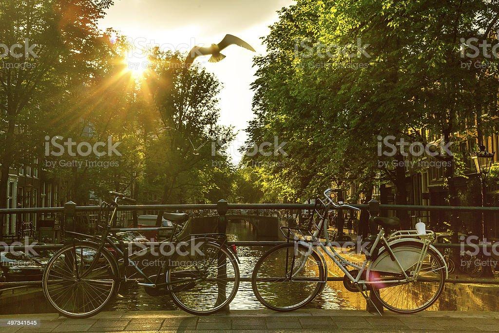 Bike in Amsterdam stock photo