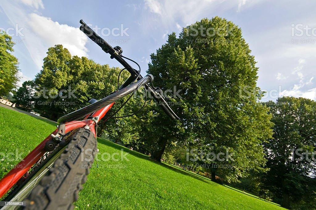 Bike in the Park stock photo