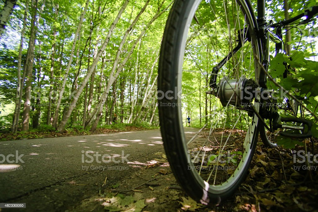 bike on forest road stock photo