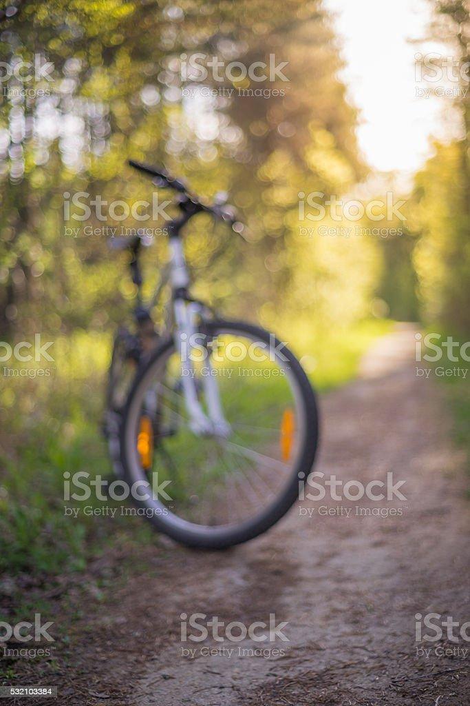 MTB bike on narrow forest path stock photo