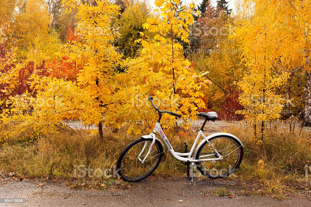 Bike on the background of the autumn landscape stock photo