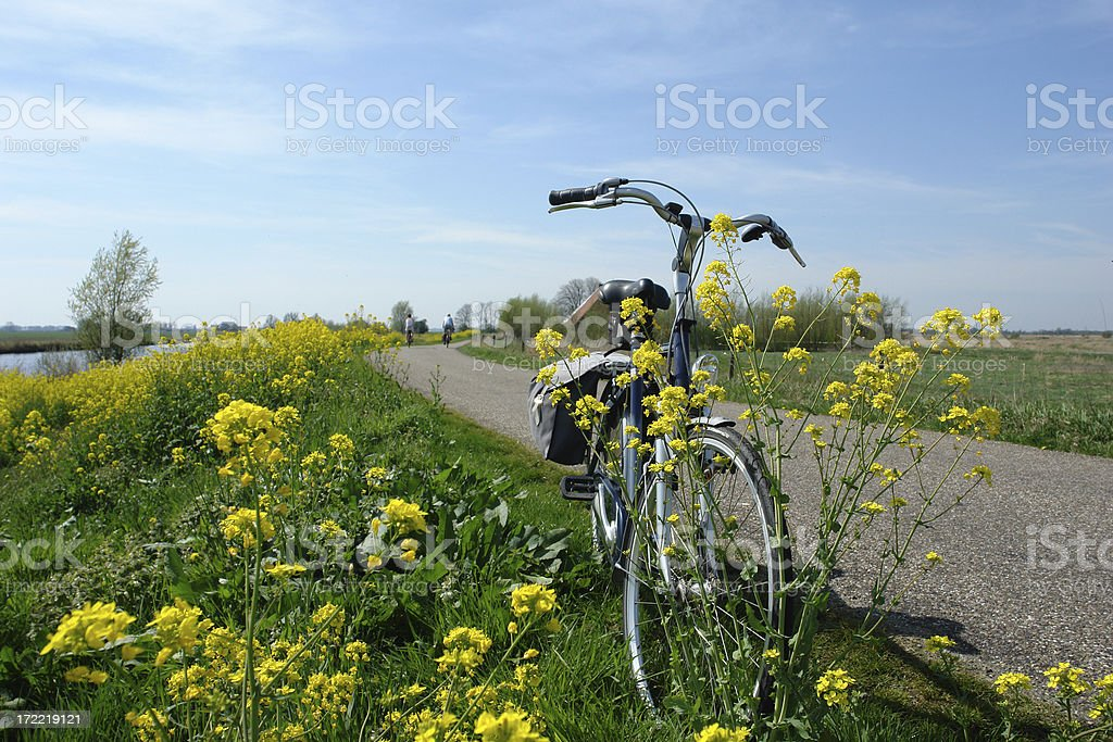 Bike on the dike royalty-free stock photo