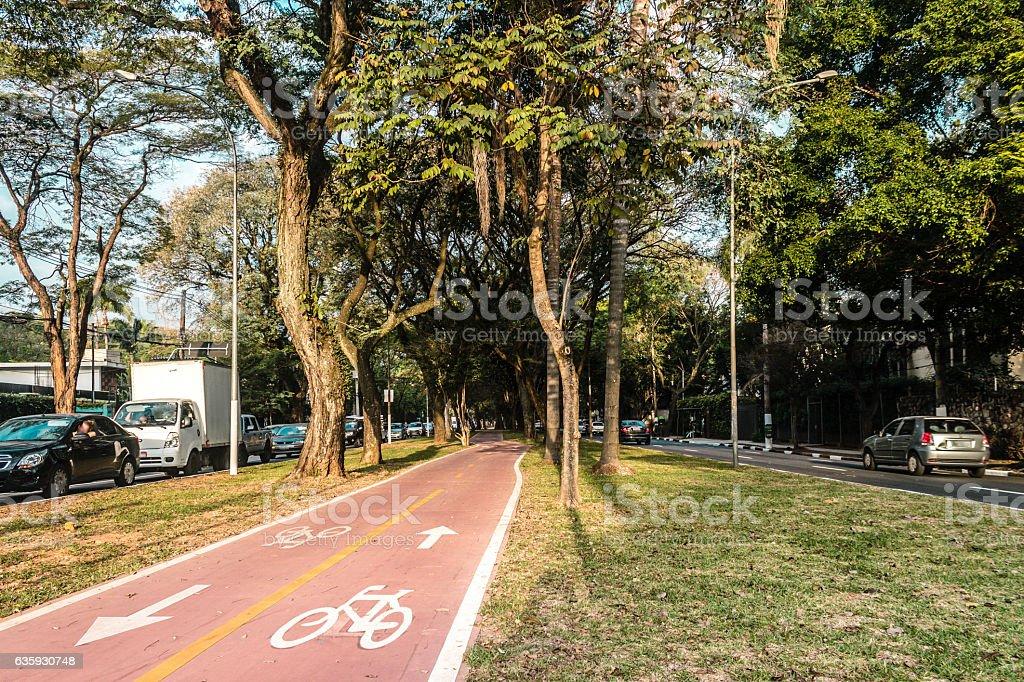 Bike Path in the Streets of Sao Paulo, Brazil (Brasil) stock photo