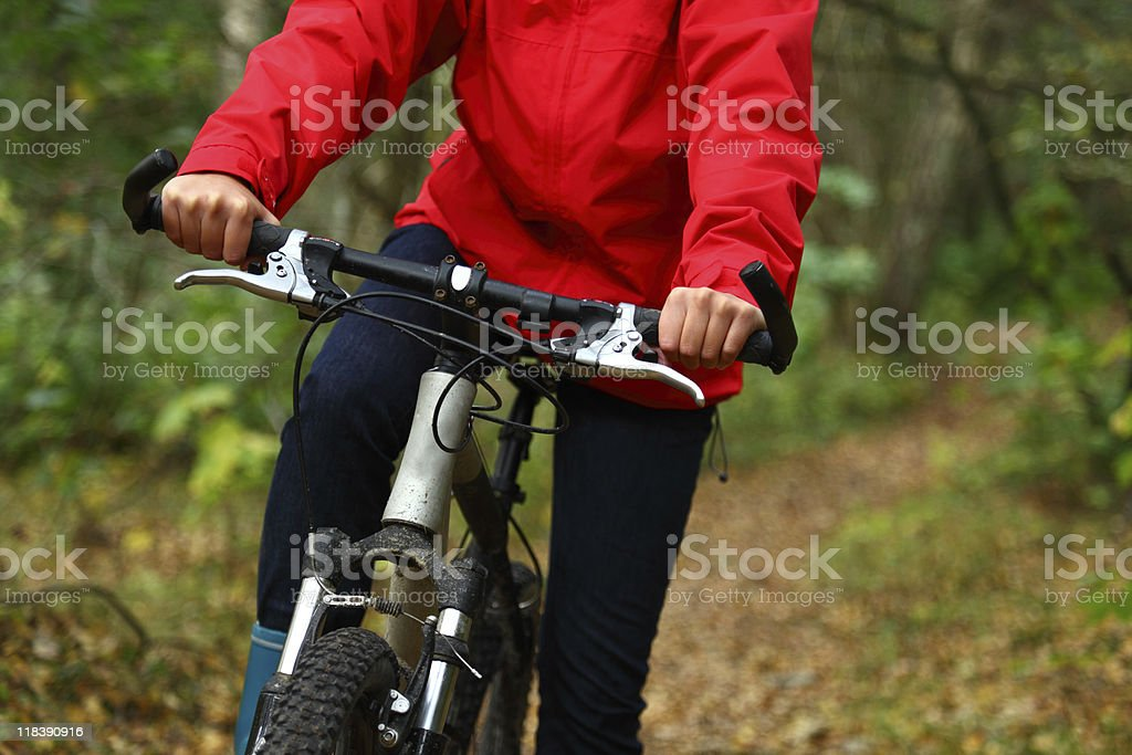 Bike royalty-free stock photo