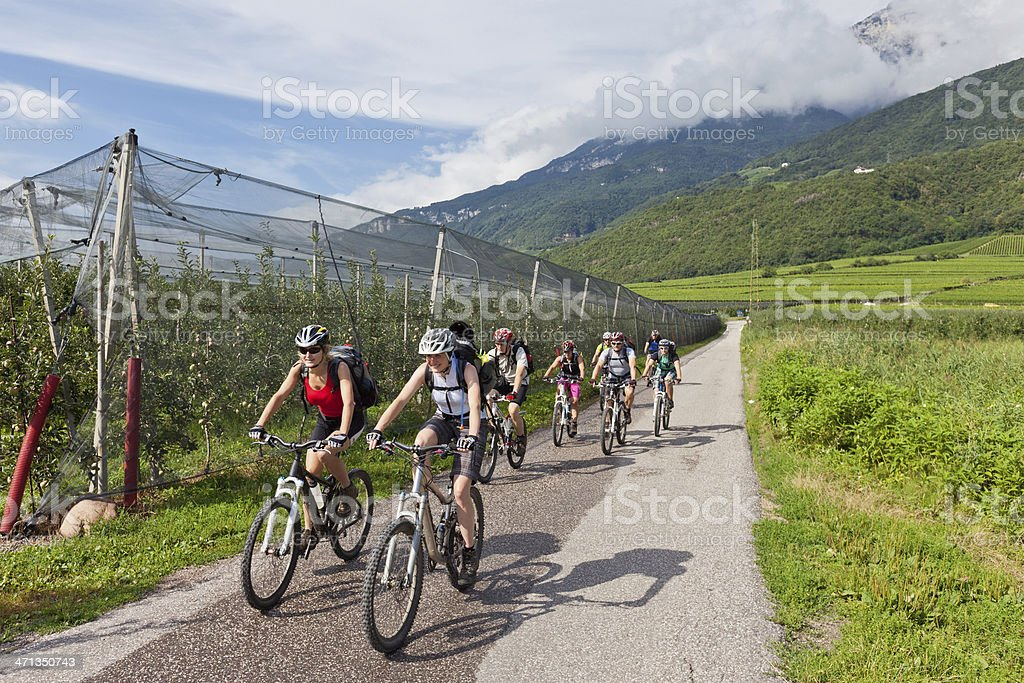 Bike the apple valley, South Tyrol royalty-free stock photo
