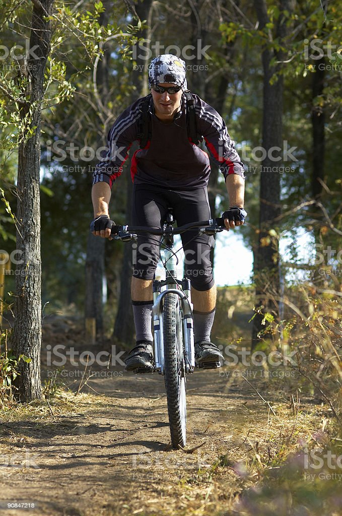 Biker on forest path royalty-free stock photo