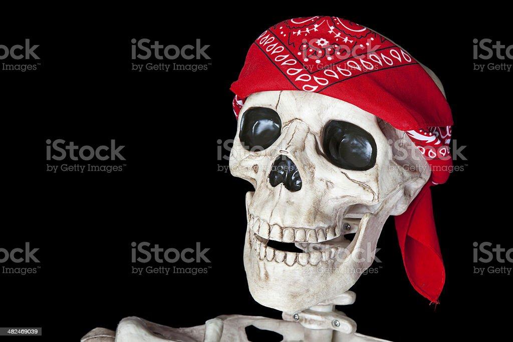 Biker Skeleton stock photo