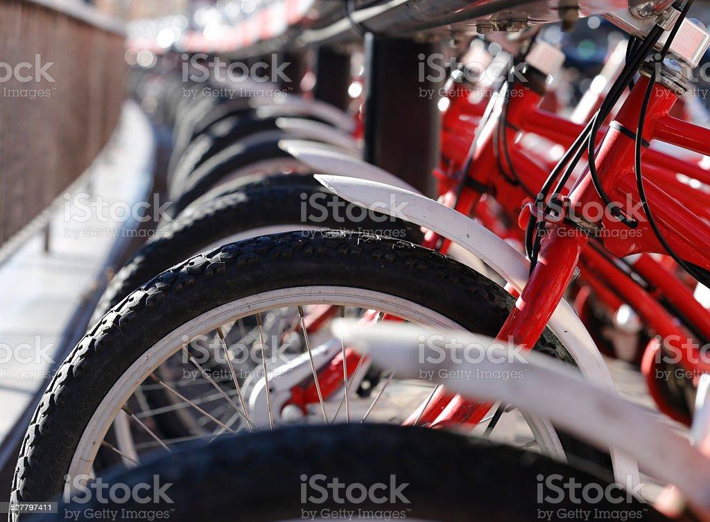 Bikes for Rent stock photo