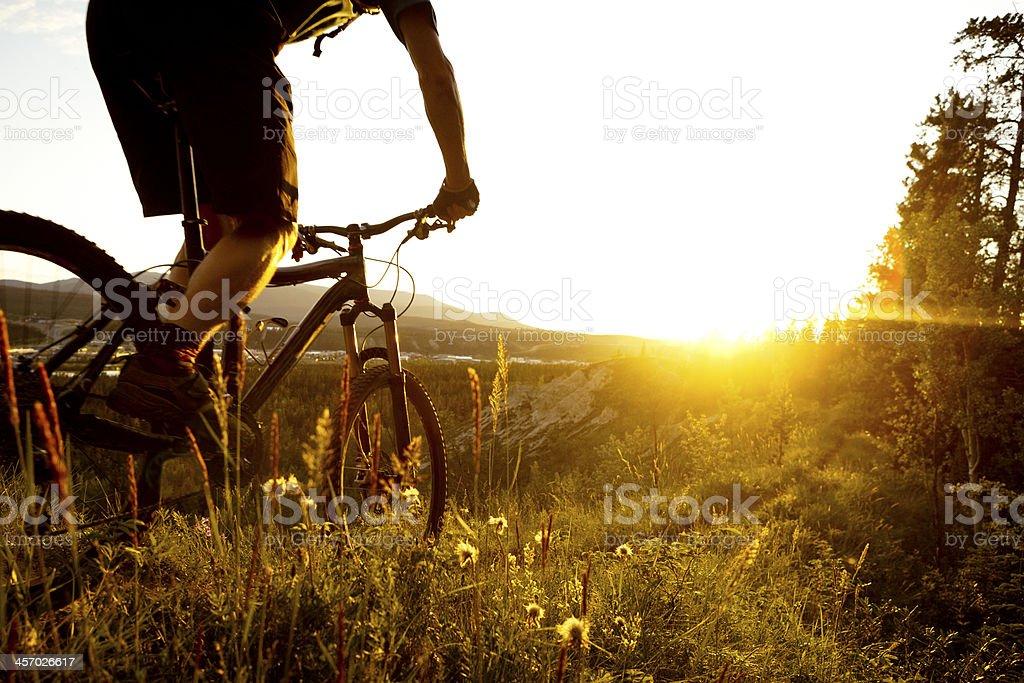 biking in sunset. stock photo