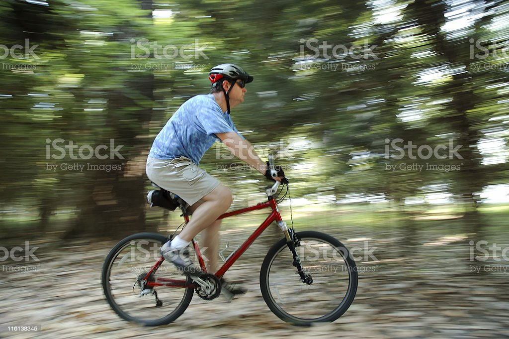 Biking in the Woods royalty-free stock photo