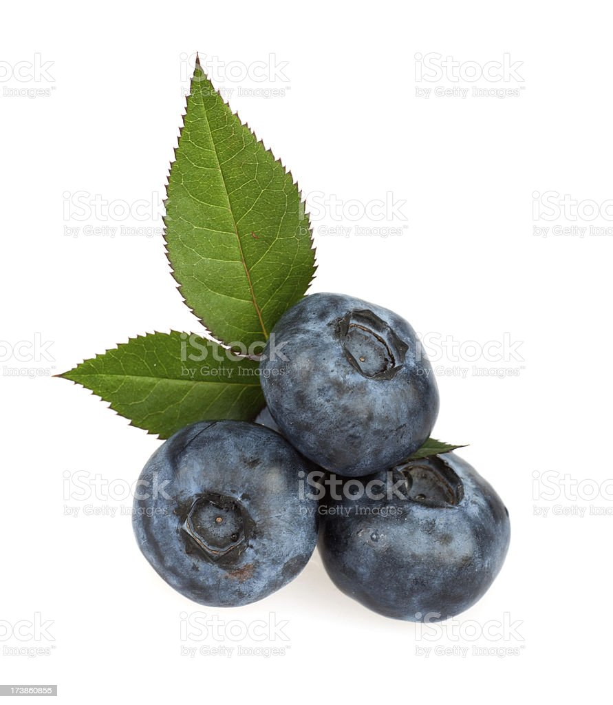 bilberry fruit vegetable isolated on white royalty-free stock photo