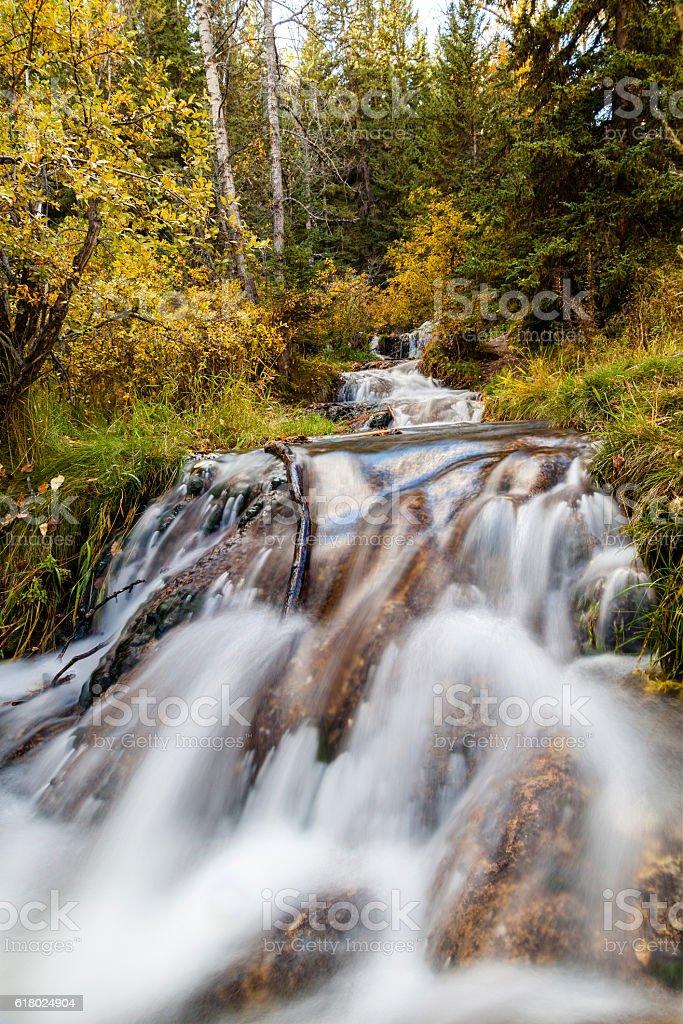 Bill Hill Springs Provincial Park, Alberta, Canada stock photo