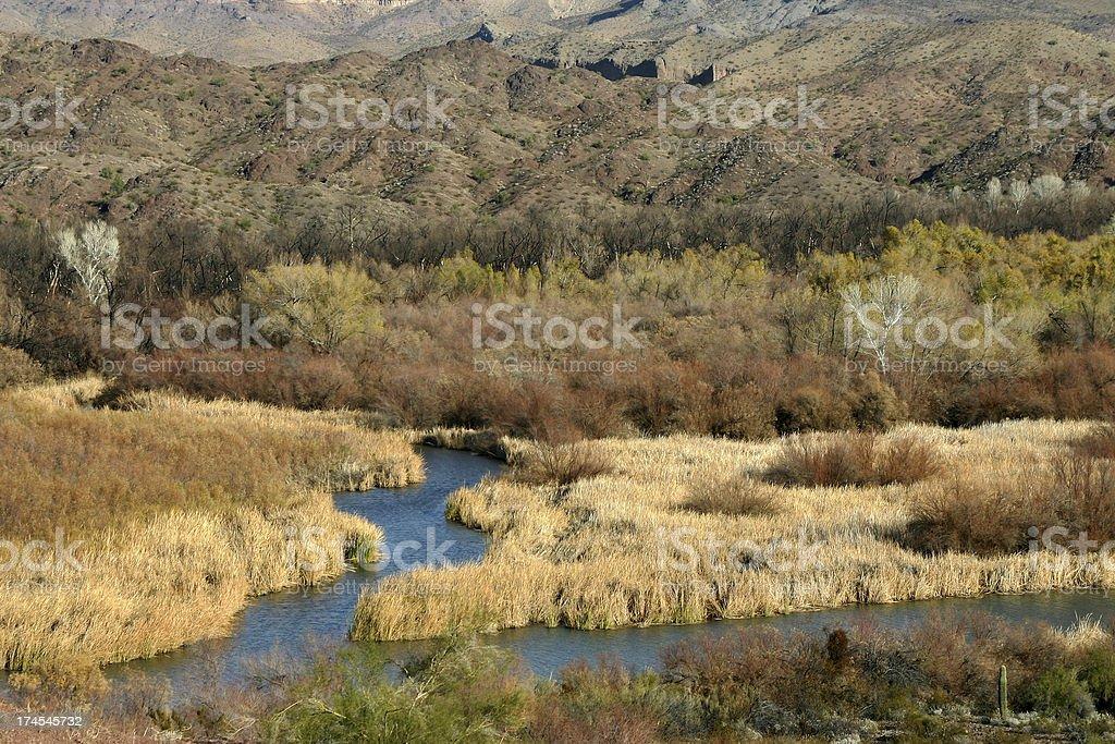 Bill Williams River Landscape stock photo