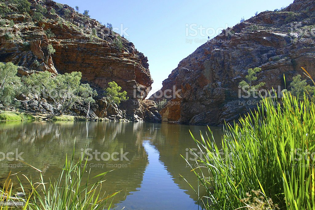 Billabong in the Northern Territory, Australia royalty-free stock photo