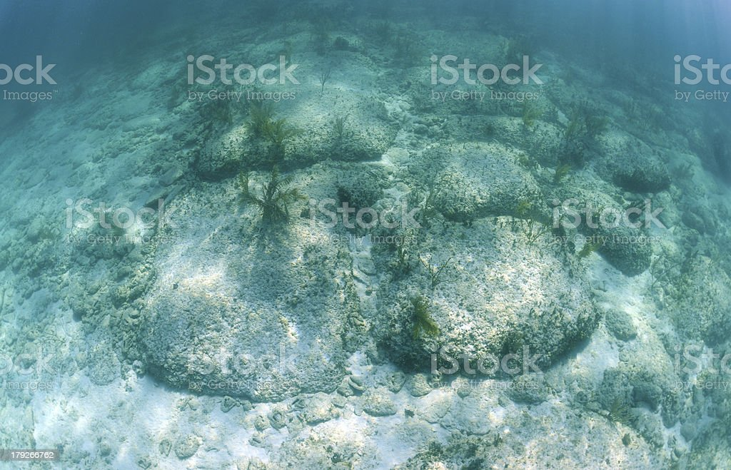Bimini Road  is an underwater rock formation royalty-free stock photo