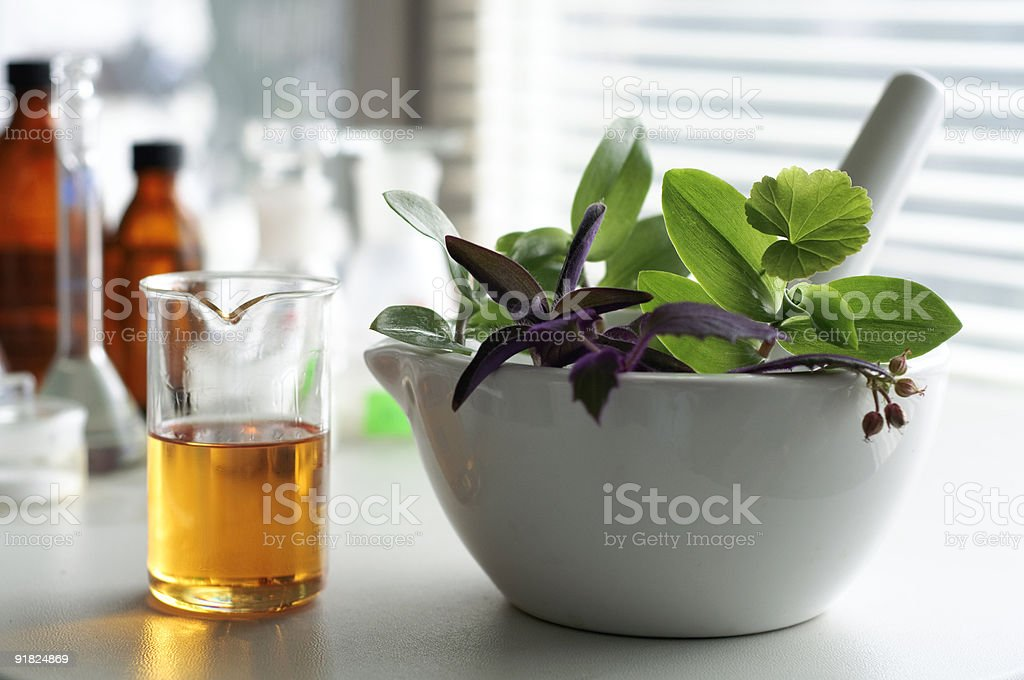 A bio diesel in a glass right next to a bowl with leaves stock photo