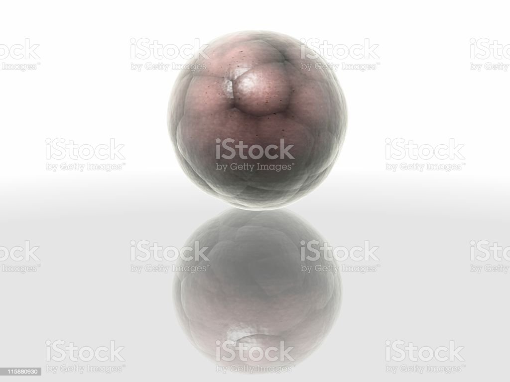 Bio element (Cocoon) 4 royalty-free stock photo