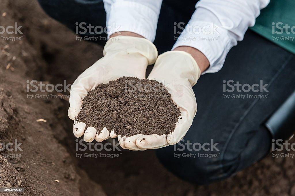 Bio food production. stock photo