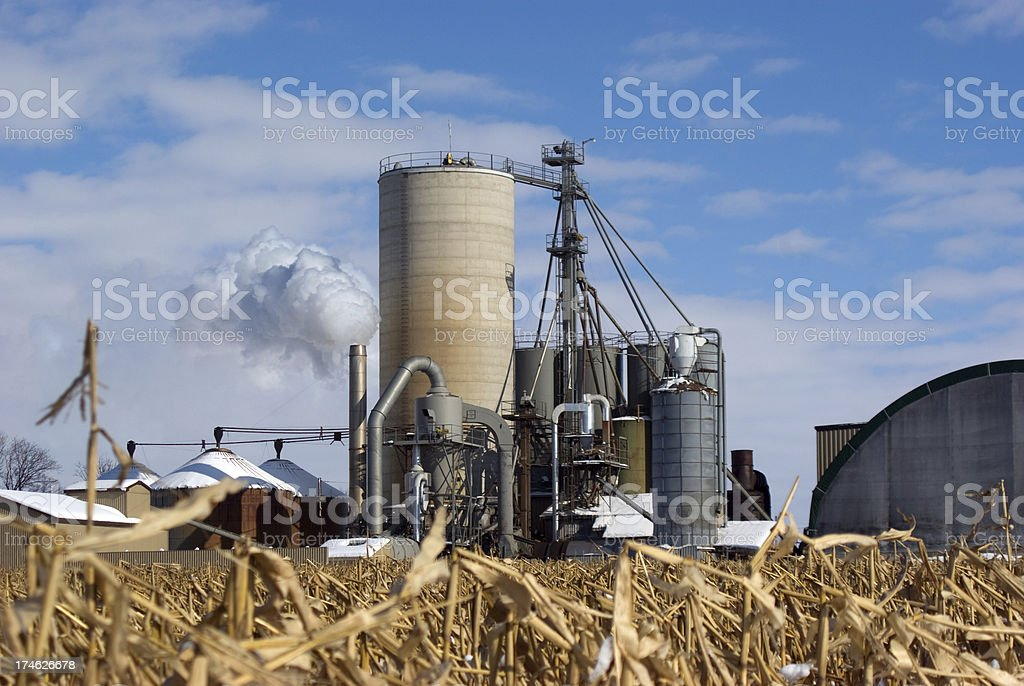 Bio Fuel Production royalty-free stock photo