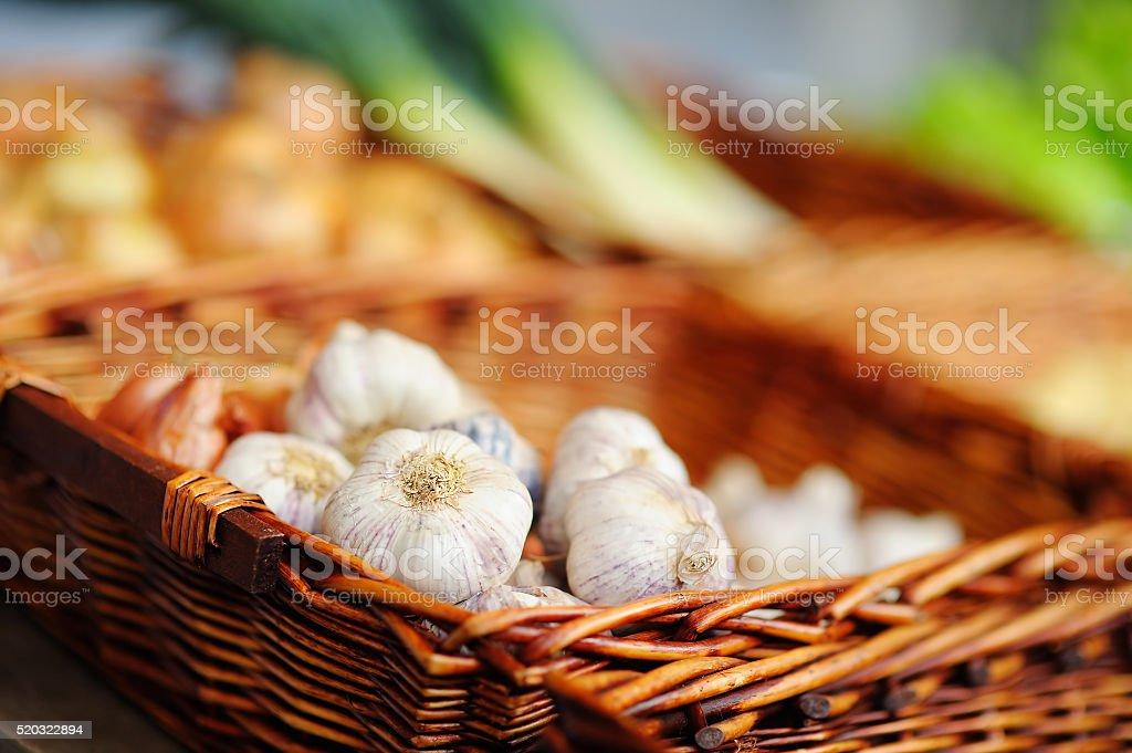 Bio garlic on agricultural market stock photo