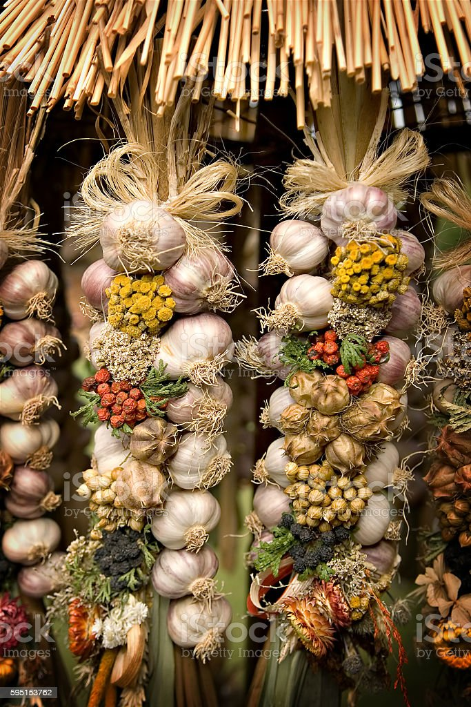 Bio garlic stock photo