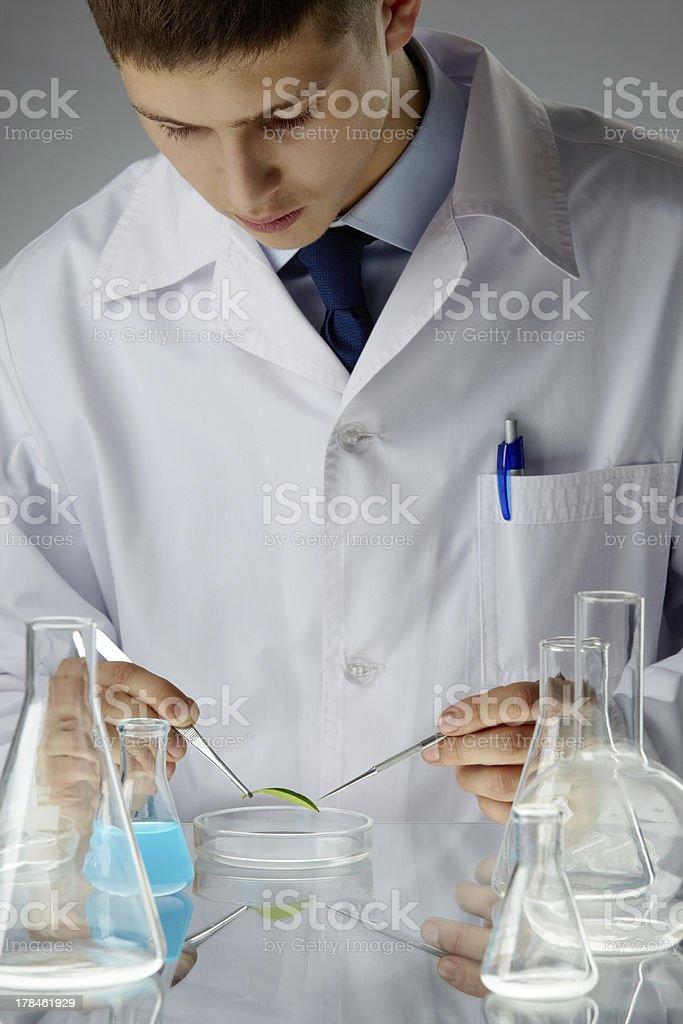 Bio sample royalty-free stock photo