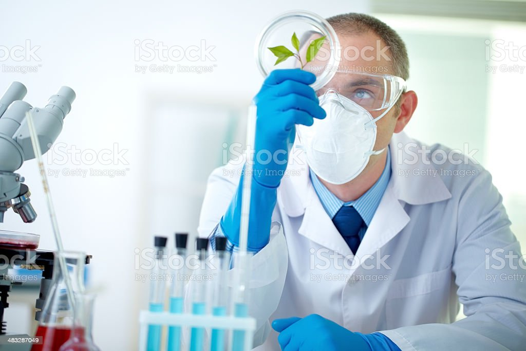 Biochemist at work stock photo