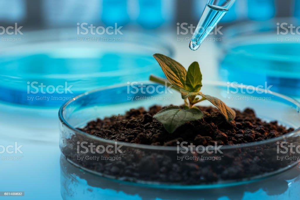 Biochemistry stock photo