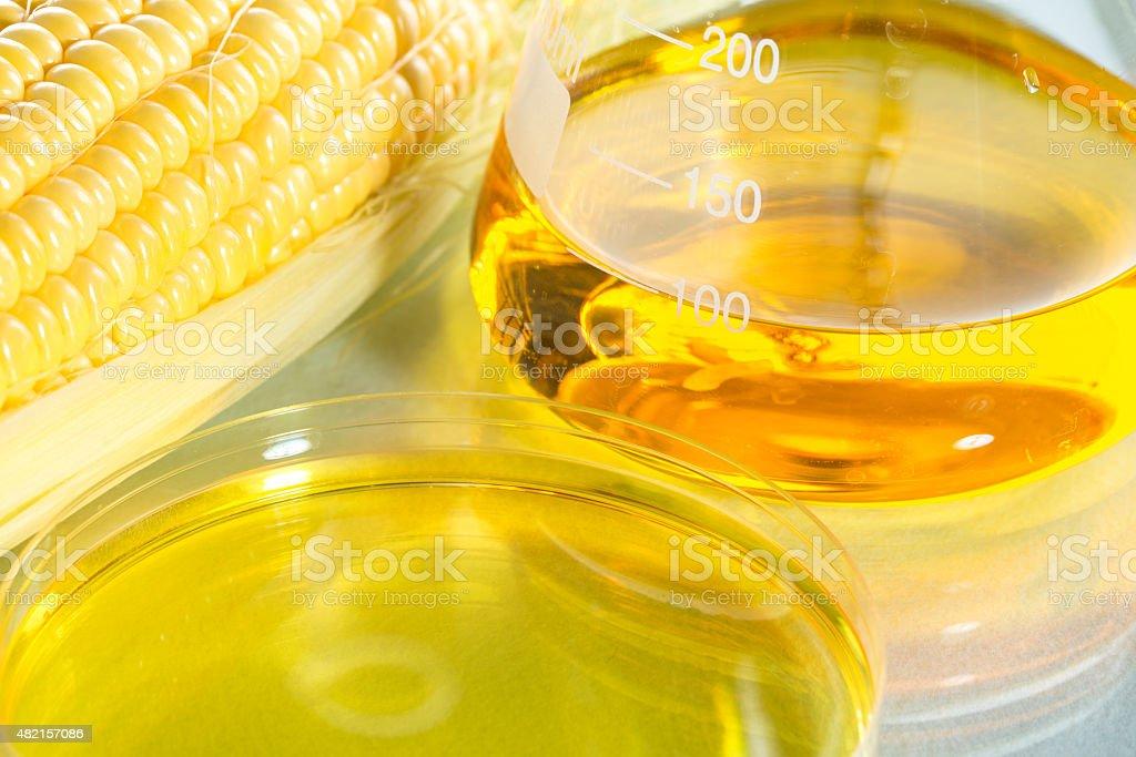 Biofuel or Corn Syrup sweetcorn stock photo