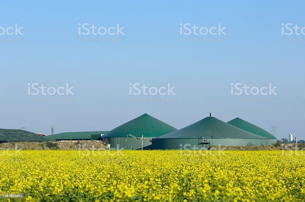 Biogas plant and rape field stock photo