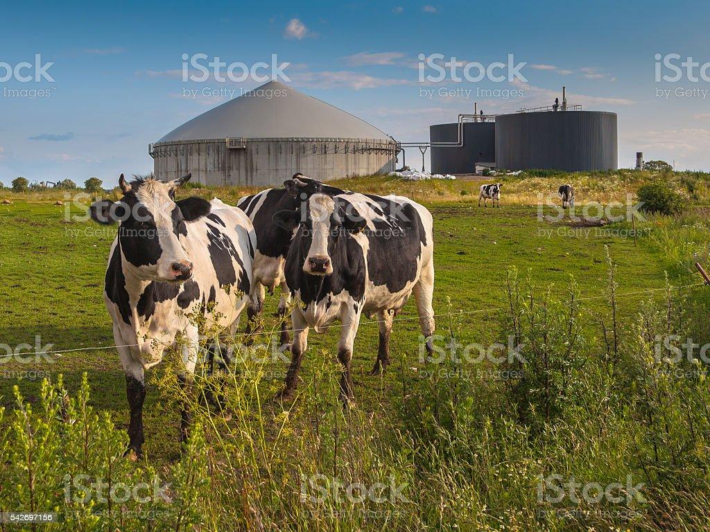 Biogas plant on a farm stock photo