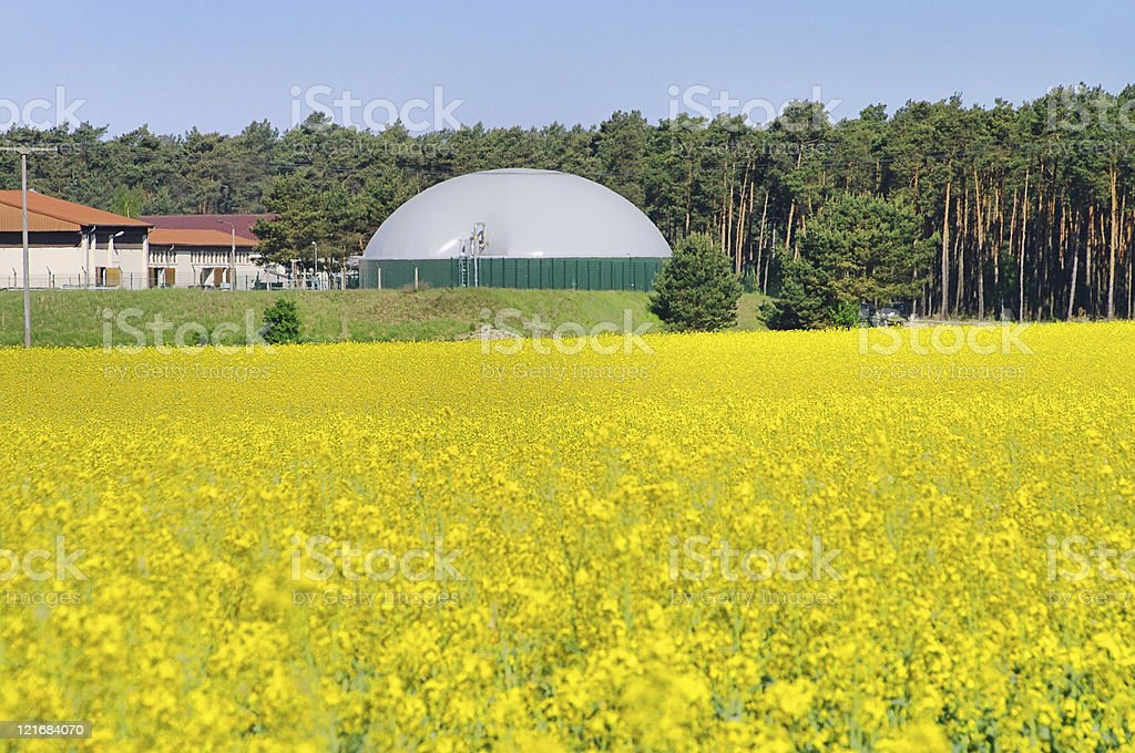 biogas plant rape field stock photo
