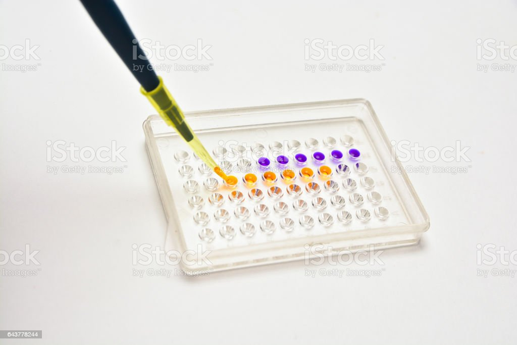 Biological research in a scientific laboratory. stock photo