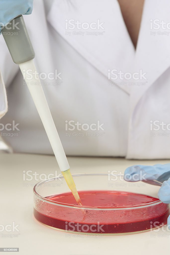 Biological research royalty-free stock photo