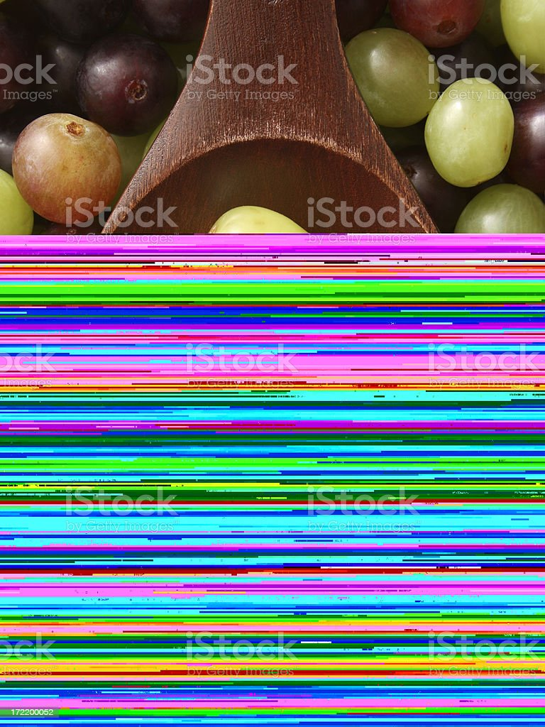 Biological Samples royalty-free stock photo
